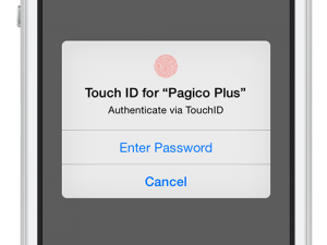 TouchIDAuthentication