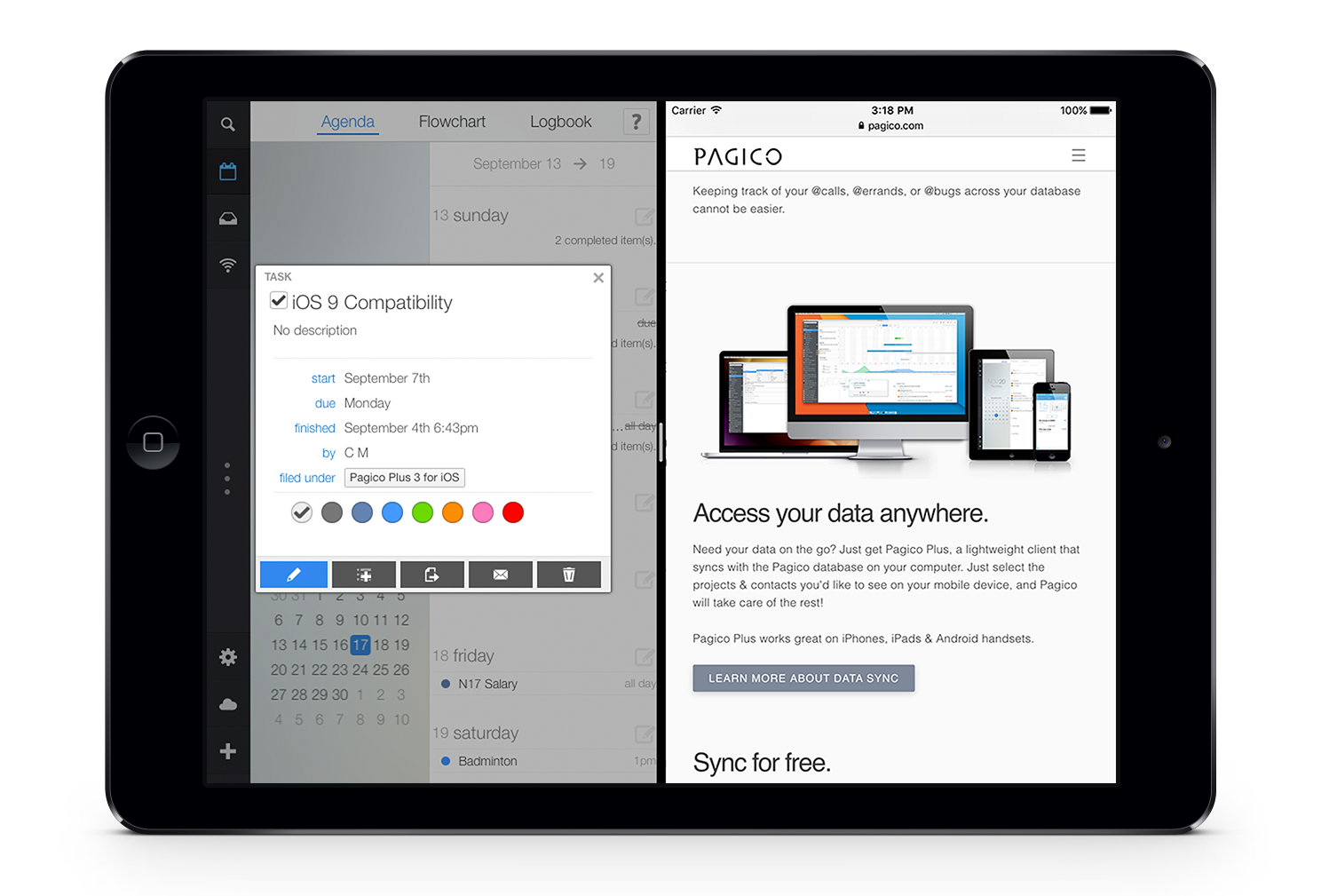 Pagico Plus 3 for iPad in Split View Mode
