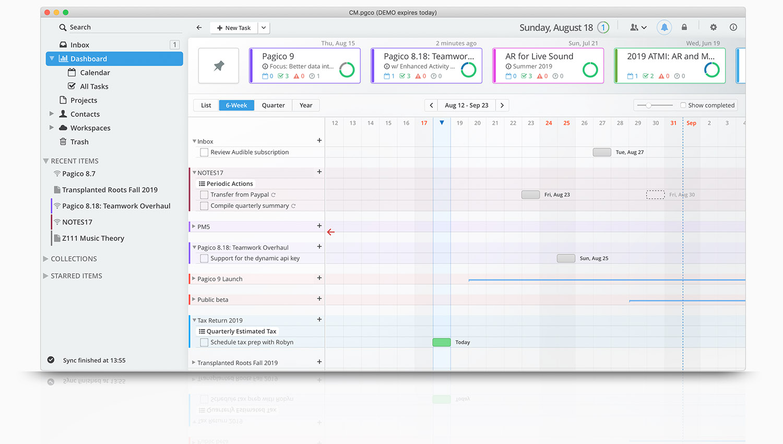 Pagico Professional for Mac OS X full screenshot